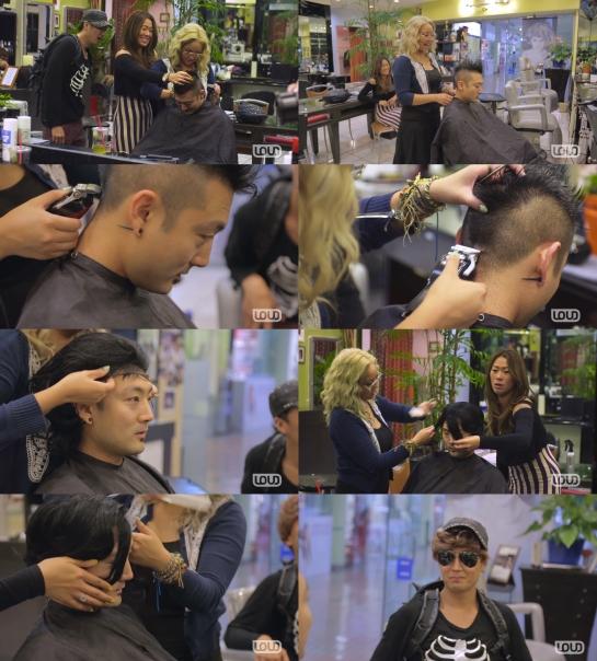 206-hairmontage